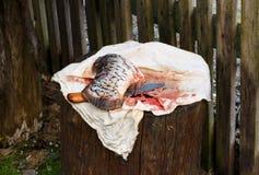 Το ψάρι στο κολόβωμα κόβεται με το αιχμηρό μαχαίρι θάλασσα κυπρίνων Στοκ Εικόνα