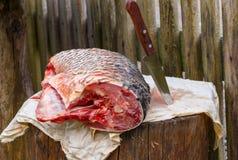Το ψάρι στο κολόβωμα κόβεται με το αιχμηρό μαχαίρι θάλασσα κυπρίνων Στοκ Φωτογραφία