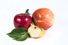 το ψαλίδισμα μήλων περιέχει το ψηφιακό λευκό μονοπατιών πλέγματος απεικόνισης κλίσης Στοκ Εικόνες