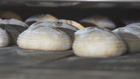 Το ψωμί ψήνεται στο φούρνο απόθεμα βίντεο