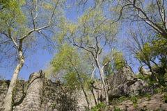 το 1995 ως καλλιεργητικό τοπίο Λισσαβώνα κληρονομιάς ημερομηνιών DA αιώνα κάστρων ixth δένει κοντά αναγνωρισμένο κόσμο όψης της Ο Στοκ Εικόνες