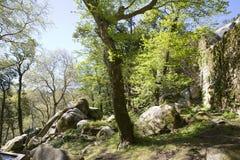 το 1995 ως καλλιεργητικό τοπίο Λισσαβώνα κληρονομιάς ημερομηνιών DA αιώνα κάστρων ixth δένει κοντά αναγνωρισμένο κόσμο όψης της Ο Στοκ φωτογραφίες με δικαίωμα ελεύθερης χρήσης
