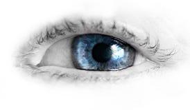 Το όμορφο ανθρώπινο μάτι, μακροεντολή, κλείνει επάνω μπλε, κίτρινος, καφετής, Στοκ Εικόνες