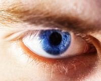 Το όμορφο ανθρώπινο μάτι, μακροεντολή, κλείνει επάνω μπλε, κίτρινος, καφετής, πράσινος Στοκ Φωτογραφίες