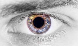 Το όμορφο ανθρώπινο μάτι, μακροεντολή, κλείνει επάνω μπλε, κίτρινος, καφετής, πράσινος Στοκ Εικόνα