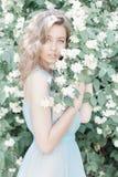 Το όμορφο γλυκό τρυφερό κορίτσι με τα μπλε μάτια σε ένα μπλε φόρεμα με την ελαφριά τρίχα που προσαράσσουν jasmine ανθίζει Στοκ Εικόνα