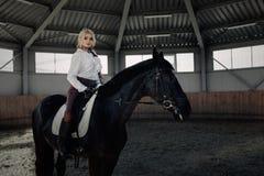 Το όμορφο κομψό νέο ξανθό κορίτσι κάθεται σε ένα μαύρο άλογό της ντύνοντας το ομοιόμορφο πουκάμισο μπλουζών ανταγωνισμού άσπρο κα στοκ φωτογραφίες με δικαίωμα ελεύθερης χρήσης
