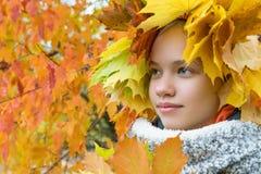 Το όμορφο κορίτσι έκρυψε στα φύλλα σφενδάμου στο υπόβαθρο του φθινοπώρου στοκ εικόνες με δικαίωμα ελεύθερης χρήσης