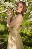 Το όμορφο κορίτσι και τα λευκά λουλούδια της ανθίζοντας Apple -Apple-tre Στοκ εικόνα με δικαίωμα ελεύθερης χρήσης