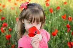 Το όμορφο κορίτσι μυρίζει το λουλούδι Στοκ Φωτογραφίες