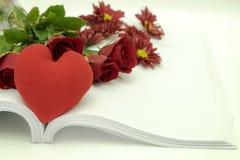 το όμορφο κόκκινο λουλ&omic Στοκ φωτογραφία με δικαίωμα ελεύθερης χρήσης