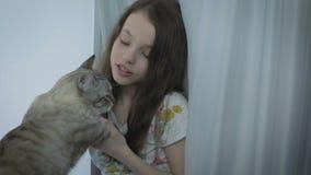 Το όμορφο μικρό κορίτσι επικοινωνεί ήπια με την αγαπημένη γάτα σας στο παράθυρο απόθεμα βίντεο