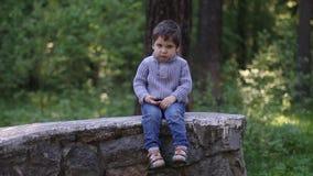 Το όμορφο μικρό παιδί κάθεται στον τοίχο πετρών και σκέφτεται απόθεμα βίντεο