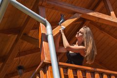 Το όμορφο νέο κορίτσι χρωματίζει ένα ξύλινο gazebo Θερινή εργασία στον κήπο Το όμορφο brunette ντύνει τις ξύλινες ακτίνες Στοκ εικόνα με δικαίωμα ελεύθερης χρήσης