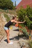 Το όμορφο νέο κορίτσι χρωματίζει ένα ξύλινο gazebo Θερινή εργασία στον κήπο Το όμορφο brunette ντύνει τις ξύλινες ακτίνες Στοκ φωτογραφία με δικαίωμα ελεύθερης χρήσης