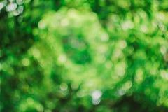 Το όμορφο πράσινο υπόβαθρο bokeh Στοκ φωτογραφία με δικαίωμα ελεύθερης χρήσης