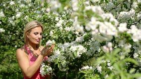 Το όμορφο προκλητικό κορίτσι απολαμβάνει τη μυρωδιά των ανθίζοντας κήπων απόθεμα βίντεο