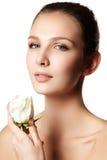Το όμορφο πρόσωπο της όμορφης νέας γυναίκας με αυξήθηκε σε ετοιμότητα - λευκό Στοκ Φωτογραφία