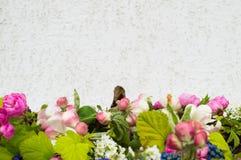 Το όμορφο πλαίσιο του φρέσκου ελατηρίου διακλαδίζεται, louiseania και muscari σε ένα ξύλινο υπόβαθρο Στοκ Φωτογραφίες