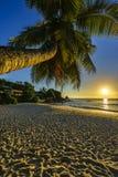 Το όμορφο ρομαντικό ηλιοβασίλεμα με έναν φοίνικα στον παράδεισο, Σεϋχέλλες είναι Στοκ εικόνα με δικαίωμα ελεύθερης χρήσης