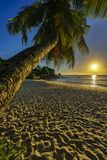 Το όμορφο ρομαντικό ηλιοβασίλεμα με έναν φοίνικα στον παράδεισο, Σεϋχέλλες είναι Στοκ φωτογραφίες με δικαίωμα ελεύθερης χρήσης