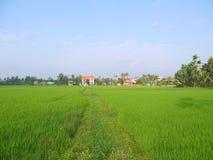 Το όμορφο τοπίο των νέων πράσινων τομέων ρυζιού με τη χαρακτηριστική κόκκινη στέγη κεραμιδιών στεγάζει σε Hoi στοκ φωτογραφίες