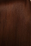 το όμορφο τρίχωμα λάμπει Στοκ εικόνες με δικαίωμα ελεύθερης χρήσης