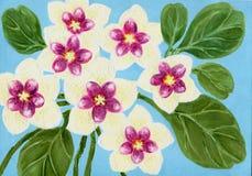 Το όμορφο hoya carnosa ανθίζει το υπόβαθρο καρτών χρωμάτων χεριών waterc ελεύθερη απεικόνιση δικαιώματος