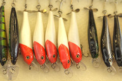 Το δόλωμα για την αλιεία Στοκ Φωτογραφία