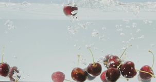 Το ώριμο γλυκό κεράσι περιέρχεται στο νερό σε ένα καθαρό άσπρο υπόβαθρο με έναν παφλασμό Φυσαλίδες του αέρα στο νερό αργός απόθεμα βίντεο
