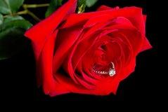 το διαμάντι αυξήθηκε Στοκ Φωτογραφία