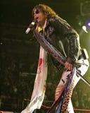 Το Aerosmith αποδίδει στη συναυλία στοκ φωτογραφία με δικαίωμα ελεύθερης χρήσης