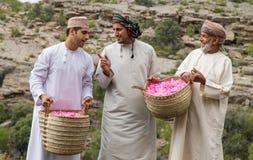 Το Al Akhdar Jabal αυξήθηκε επιλέγοντας Στοκ Εικόνα
