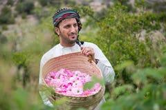 Το Al Akhdar Jabal αυξήθηκε επιλέγοντας Στοκ Φωτογραφίες