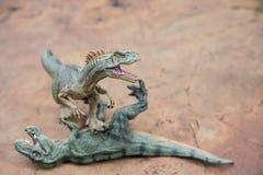 Το Allosaurus στέκεται και ο τυραννόσαυρος βάζει Στοκ Φωτογραφία