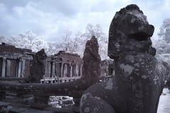 Το Angkor thom Siem συγκεντρώνει την Καμπότζη Στοκ Φωτογραφία