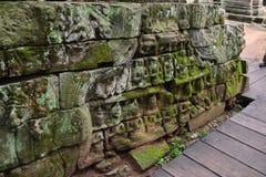 Το Angkor Wat, ναός TA Prohm, Siem συγκεντρώνει, Καμπότζη Στοκ Εικόνες