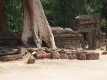 Το Angkor Wat σε Siem συγκεντρώνει, Cambodia Στοκ Φωτογραφίες
