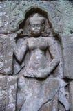 Το Apsara στο ναό TA Prohm σε Angkor σε Siem συγκεντρώνει την Καμπότζη Στοκ εικόνες με δικαίωμα ελεύθερης χρήσης