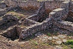Το Archeological σκάβει Στοκ Εικόνα