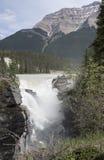 Το Athabasca πέφτει 4389 Στοκ εικόνα με δικαίωμα ελεύθερης χρήσης