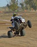Το ATV αυξάνεται στο buck στοκ εικόνα