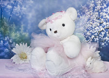 το ballerina αντέχει teddy Στοκ Εικόνα
