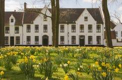Το Beguinage ή το Begijnhof του Μπρυζ Στοκ Φωτογραφία