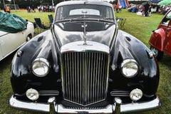 Το Bentley Lee επανδρώνει τη φυλή Serie Στοκ φωτογραφίες με δικαίωμα ελεύθερης χρήσης
