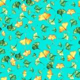 Το biloba Ginkgo αφήνει στο floral watercolor το άνευ ραφής σχέδιο στο τυρκουάζ backround Εγκαταστάσεις δέντρων γνωστές ως ginko  ελεύθερη απεικόνιση δικαιώματος