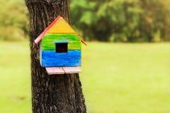 Το Birdhouse στο δέντρο σταθμεύει δημόσια Στοκ Εικόνα