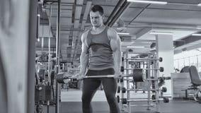 Το Bodybuilding στη γυμναστική - μυϊκό άτομο εκτελέστε τις ασκήσεις με τους δικέφαλους μυς barbell, γραπτούς - κλείνει επάνω στοκ εικόνες με δικαίωμα ελεύθερης χρήσης