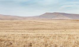 Το Brecon οδηγεί το εθνικό πάρκο στην Ουαλία, UK στοκ φωτογραφία με δικαίωμα ελεύθερης χρήσης