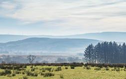 Το Brecon οδηγεί το τοπίο στην πρώιμη άνοιξη στην Ουαλία, UK στοκ εικόνες με δικαίωμα ελεύθερης χρήσης